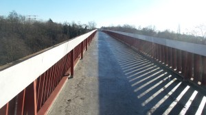 I took a different path home today and crossed a footbridge above the highway. The sun was out!